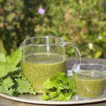 3 gyógynövény, amely segít a tavaszi méregtelenítésben