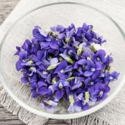 Illatos ibolya: gyógyít, ízesít és dekorál