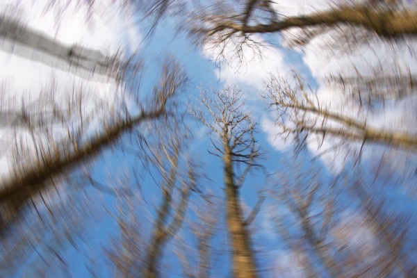Forog velem a világ érzése kinn a természetben, fák között.