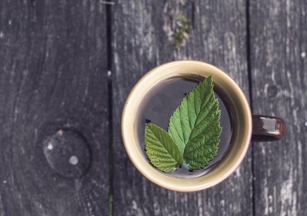Erdeimálnalevél-tea egy barna bögrében felülről fotózva, a tetején egy friss levéllel.