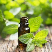 Gyógynövények, amelyek csökkentik a cigaretta utáni vágyat