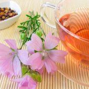 A gyomornyálkahártya-gyulladás orvoslása gyógynövényekkel