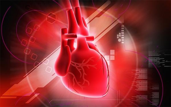 Emberi szívet ábrázoló kép piros háttérben, színes ábrákkal.