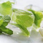Hasznos gyógynövények a nyári kánikulában