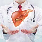 Májbetegségek: zsírmáj, toxikus májbetegség, májcirrózis és májgyulladás