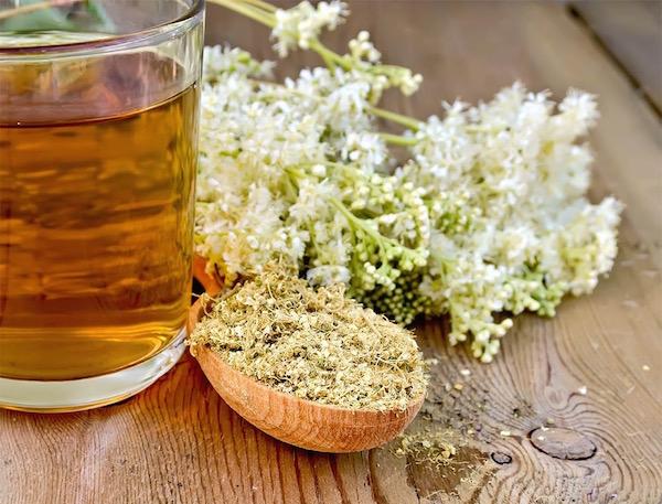 Réti legyezőfűből készült tea üvegpohárban, mellette a friss és a szárított gyógynövény.
