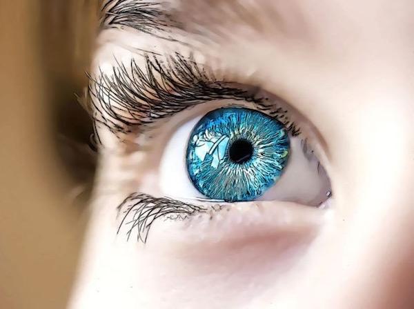 Kék színű szivárványhártya felosztása az íriszdiagnosztikában.