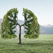 Az életünk függ tőle: oxigén