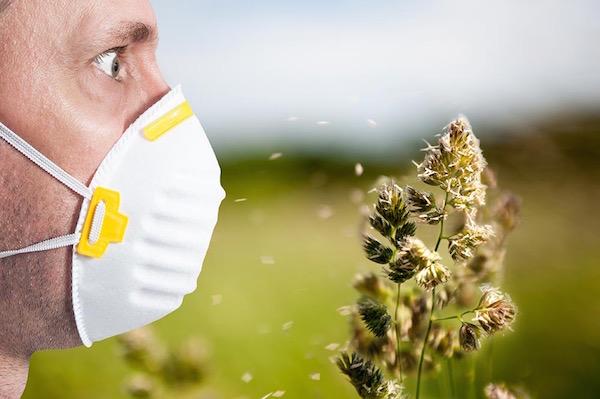 Szájmaszkban lévő férfi ijedten szemléli a szélben szálló apró virágrészeket.