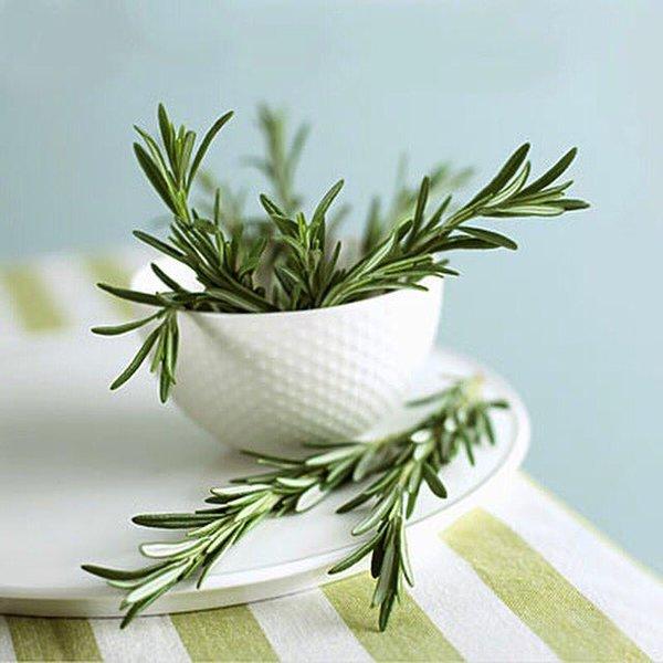 Friss rozmaringszálak egy fehér tálban és a tányéron.