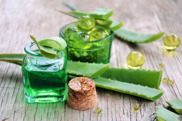 Aloe vera lemetszett levelei és a belőle kicsöpögtetett lé és zselé zöld üvegcsékben.