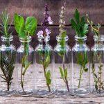 Gyógynövények duzzadt lábra