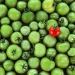 Zöldparadicsom mint csont- és izomerősítő