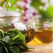 Szőrös a levele, de a teája egészséges: csalán
