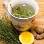 Téli gyógyítónk: fenyőtűlevél-tea
