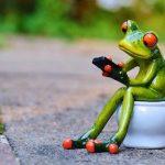 Székrekedés kezelése gyógynövényekkel