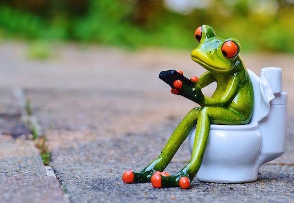 Kerámiából készült zöld béka ül mobiltelefonnal a kezében egy WC-n.