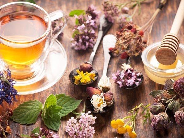 Friss gyógynövények, mellettük gyógyító tea, méz.