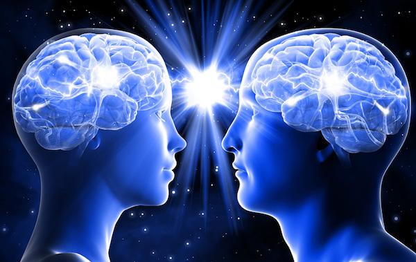 Női és férfi agya egymáshoz hasonlítva.