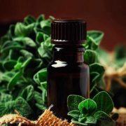A gyulladás és a fájdalom nagy ellensége: oregánóolaj