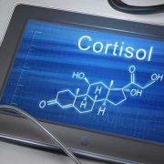 A magas kortizolszint betegségeket és halált okoz