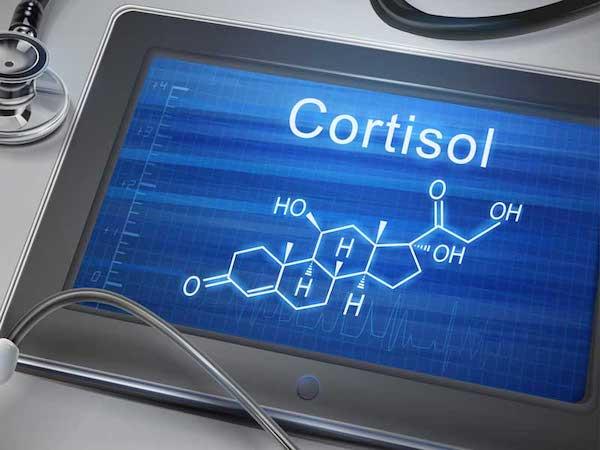 Táblagépen a kortizol vegyi képlete, mellette egy fonendoszkóp.