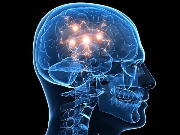 Különböző agyi átvitelek ábrázolása egy sematikus rajzon.