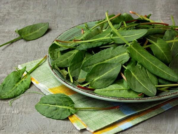 Sóskalevelek egy zöld tányérban, amely alatt egy színes vászonszalvéta van összehajtva.