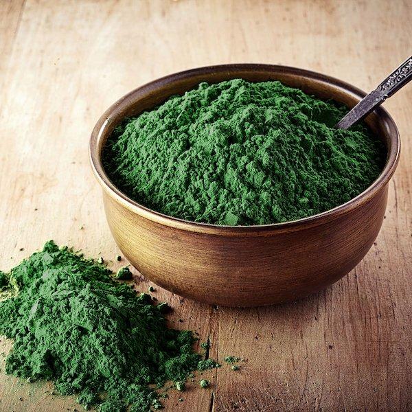 Chlorella alga por formában egy agyagtálban és mellette is.