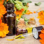 Egy gyulladásgátló és vírusellenes gyógynövény: körömvirág