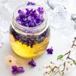Ibolya, a tavasz első hírnöke, amelyből méz is készülhet