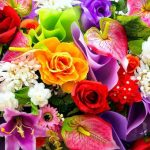 A kedvenc virágunk elárulja a személyiségünket