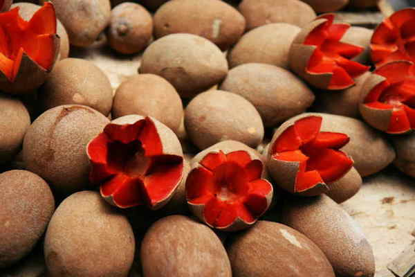 A krumplihoz hasonlító zapota egészben és díszes cikkekre vágva.