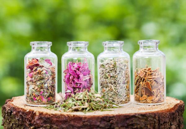 Különféle gyógynövények kis üvegekbe téve egymás mellett egy nagy farönkön.