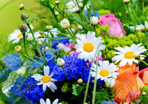 Különféle virágok egy nagy csokorba kötve.