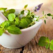 Gyógynövények, amelyek meggyógyítják az idegrendszert