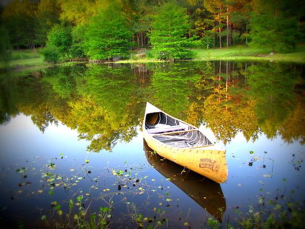 Gyönyörű tájfotó erdővel, kis tóval, csónakkal.