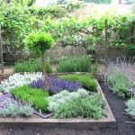 5 gyógynövény-dekoráció a kertben, gyógyszerek a házban