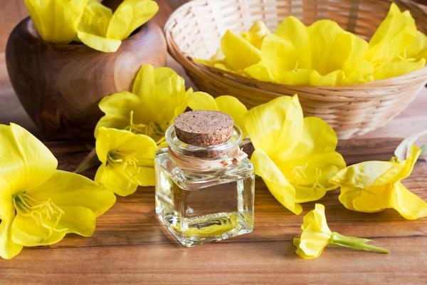 Parlagi ligetszépe sárga virágai, mellettük kis üvegcsében a belőlük kinyert olaj.