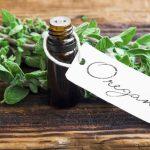 Természetes antibiotikum és gombaellenes szer: oregánóolaj
