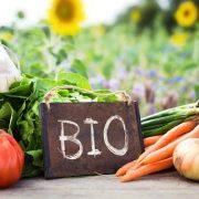 A biogazdálkodás előnyei