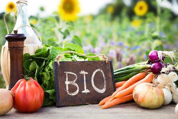 Különféle ökológiai gazdálkodásból származó zöldségek, mellettük BIO feliratú tábla.