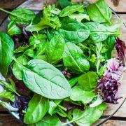 A leveles zöldségek javítják a kognitív teljesítményt