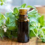 Egy természetes csodaszer: oregánóolaj