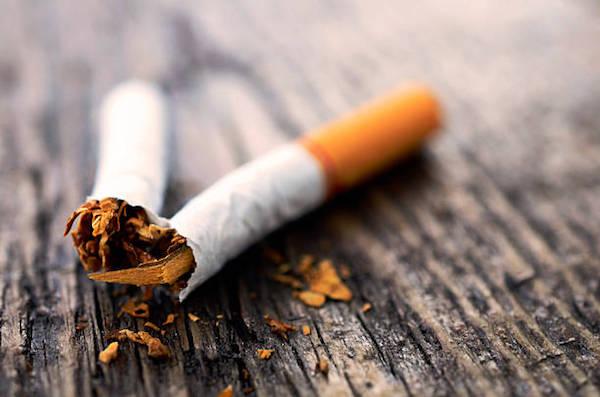 Kettétört cigaretta közelről fotózva.