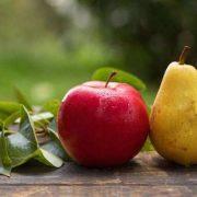 Stroke kockázatát csökkentő őszi gyümölcsök: körte és alma