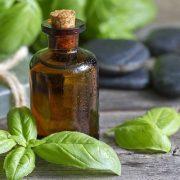 A bazsalikom-illóolaj harca a baktériumok, a megfázás és a rossz szagok ellen