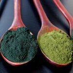 Az egészség karbantartói: algák