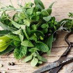 Gyógynövények, amelyek segítenek leszokni a dohányzásról