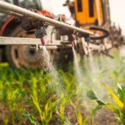 A peszticidek károsítják az agyat